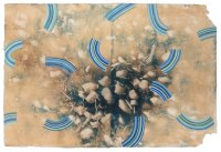 Outgrowth_toned cyanotype_gouache